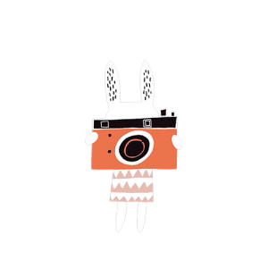 Rabbit take a Photo