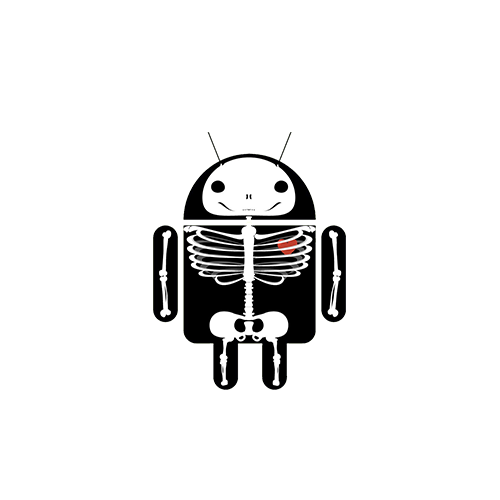 android-anatomy