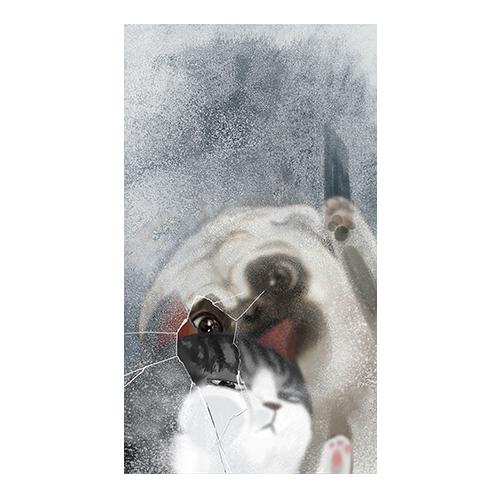 pug แมว ติดกระจก